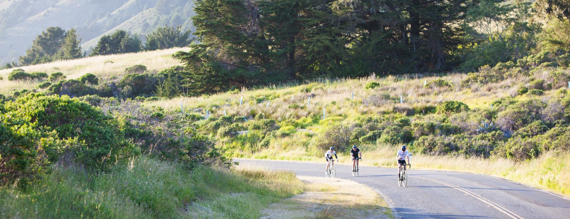 Bikes By Brian –       415 328 6480
